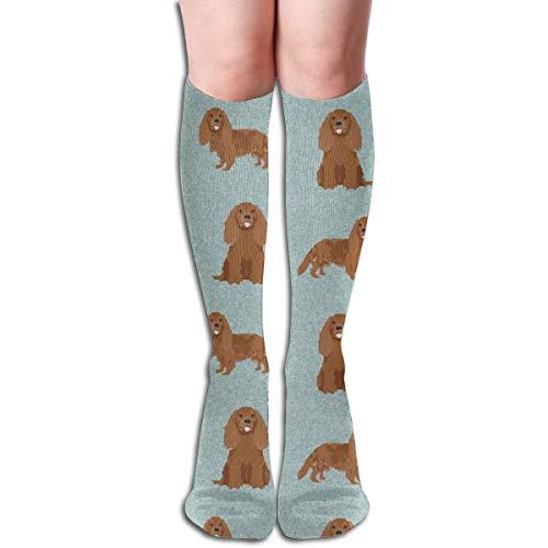 Cavalier King Charles Spaniel, Dog, Ruby Cavalier, Dog Breeds, Dog Breed - Pet Quilt B Coordinate Men's Women's Cotton Crew Athletic Sock Running Socks Soccer Socks 19.7 inch