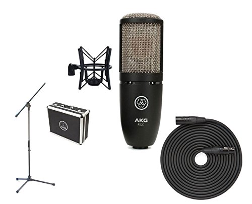 - AKG P220 + Boom Stand + Cable