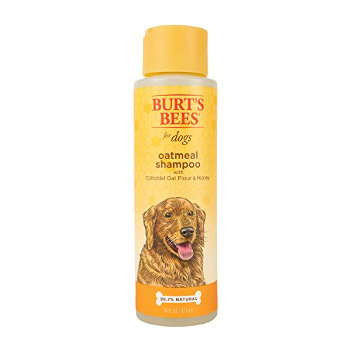 Burt's Bees Natural Shampoo for Dogs, Made with Colloidal Oat Flour and Honey