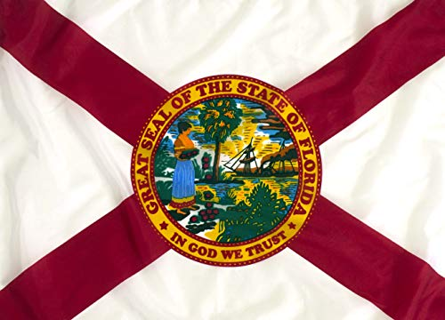 5x8ft Florida State Flag/State Flag of Florida Outdoor Nylon – Made to Last For Sale