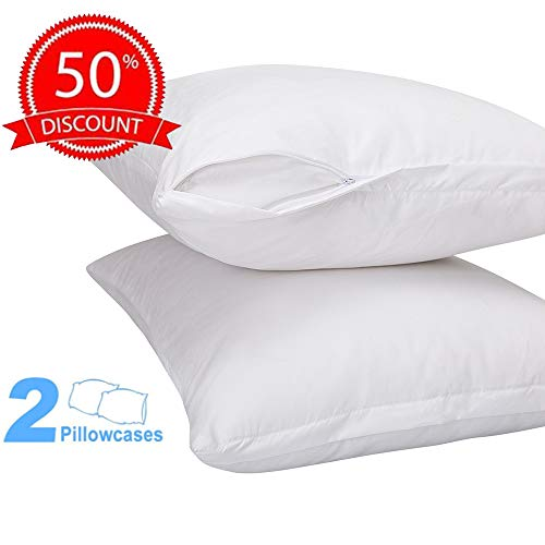 DOWNCOOL 2 Pack Premium Zippered Pillow Protectors- Softness & Breathable Pillowcase Cover- Protection Bed Bug, Dust Mite & Allergy Control- Queen, 20x30 Inch