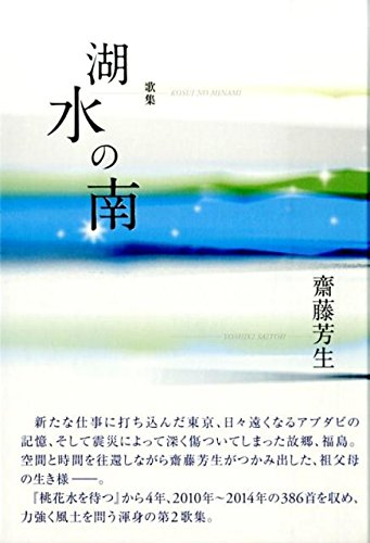 歌集 湖水の南 (かりん叢書)