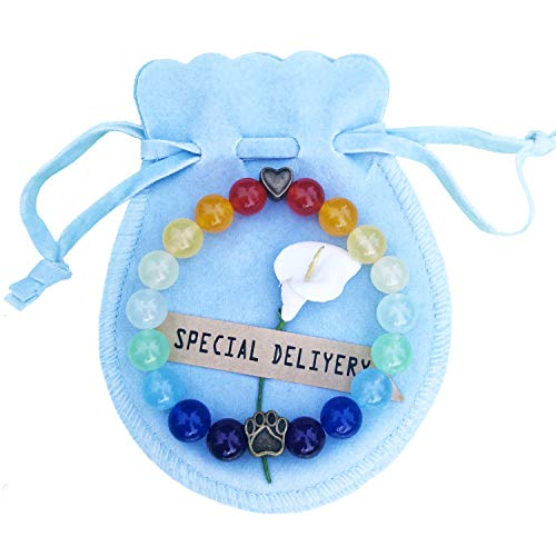 RedSum Rainbow Bridge Pet Memorial Bracelet-Loss of Dogs Gifts for Pet Remembrance in Memory of Your Beloved Pup - Pet Loss Gifts ()