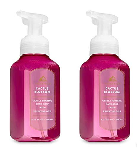 White Barn Gentle Foaming Hand Soap in Cactus Blossom (2 Pack)