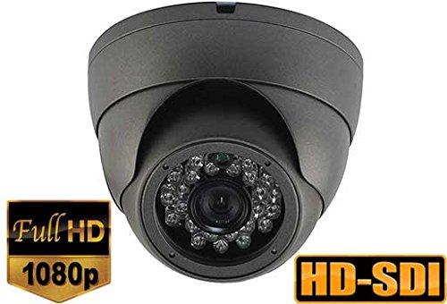 (SDI) 2.1MP Panasonic HD-SDI 1080P Wide Angle Dome Camera