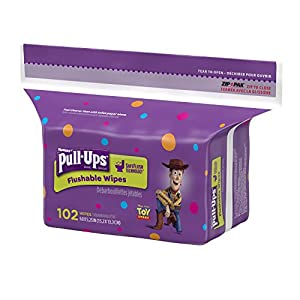 Huggies Pull-Ups Flushable Moist Wipes Refill, 102 Count (Pack of 8)