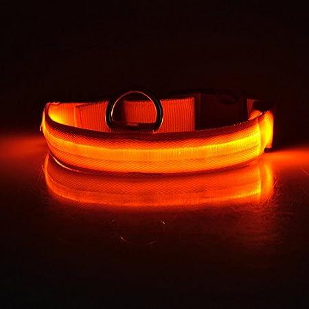 Keysui Collier lumineux d'identification LED de luminosité réglable pour sécurité des chiens