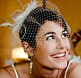 Darice VL122W Birdcage Wedding Veil Headpiece with Feather Accent, White