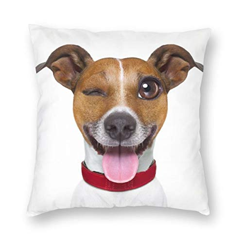 Emoticon Tongue Sticking Out (XMM Throw Pillow Cover Many Color Options Multiple Size Multicolors Double Sides 3D Printed Invisible Zipper, Funny Terrier Emoticon Sticking Out The Tongue 24 x 24)