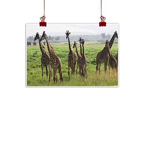 duommhome Light Luxury American Oil Painting Masai Giraffe Savannah Canvas Wall Art 24