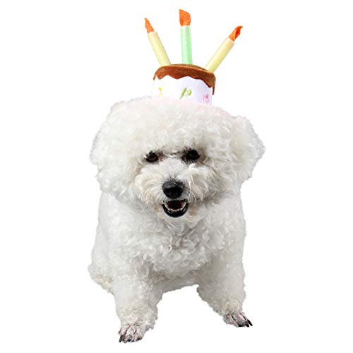 (AUSWIEI Halloween Carnival Holiday Hat Birthday Hat Pet Show Supplies Cake & Candles Design (Color : Pink Candle Cake, Size :)