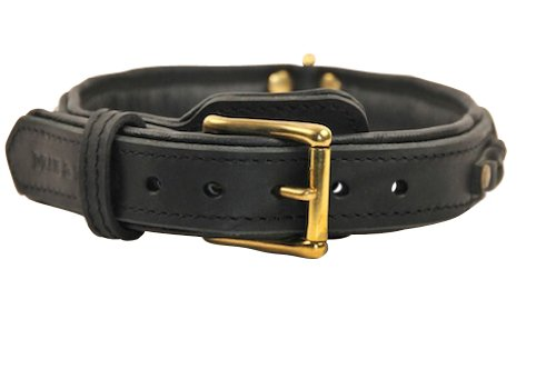 Dean-and-Tyler-DEANS-LEGEND-Leather-Dog-Collar-with-Black-Nappa-Lining-and-Brass-Hardware-Black-Size-18-by-1-12-Fits-Neck-16-to-20