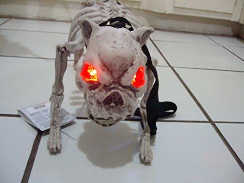 Sunstar Industries Vicious Barking Skeleton Dog Menacing Fierce Halloween Decoration Prop
