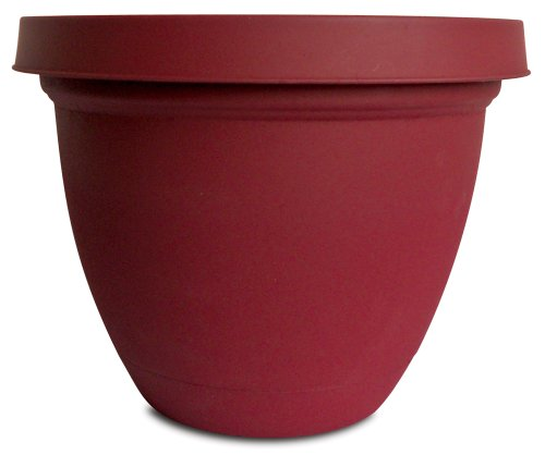 Infinity Flower (Akro-Mils IFA14000F85  Infinity Planter with Attached Saucer, 14-Inch, Warm Red)