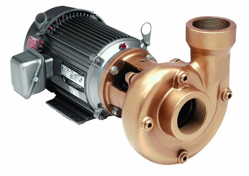 AMT Pump 3150-95 Heavy Duty Straight Centrifugal Pump, Cast Iron, 2 HP, 3 Phase, 230/460V, Curve A, 2