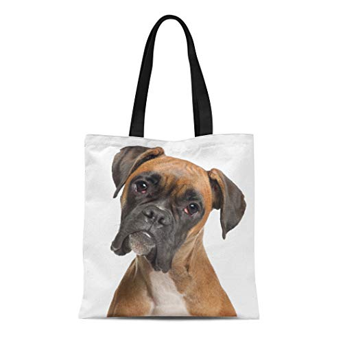 Semtomn Cotton Canvas Tote Bag Brown Dog Boxer 12 Months Old in Front Reusable Shoulder Grocery Shopping Bags Handbag Printed