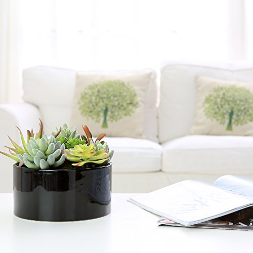 MyGift Decorative Round Faux Potted Succulents/Artificial Plant in 6 Inch Glazed Black Ceramic Flower Pot