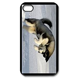 Generic Case Huskies For iPhone 4,4S A2WQ343682
