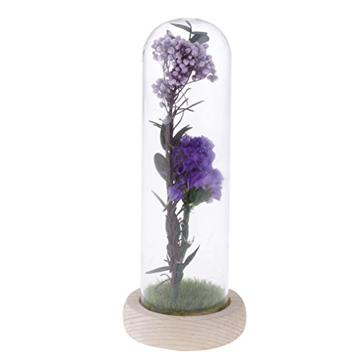 Fityle Wooden Base Glass Display Cloche Bell Jar Dome Flower Immortal Preservation Vase with Dried Flower