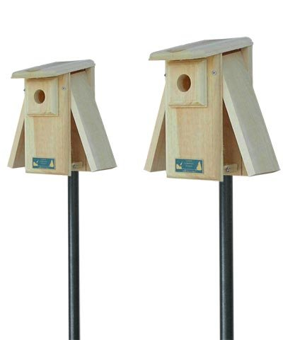 Coveside Observation Bluebird House Package with Poles