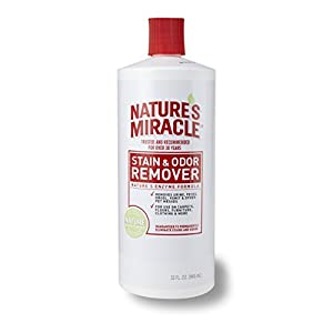 Nature S Miracle Advanced Dual Action Hard Floor Stain Odor Remover