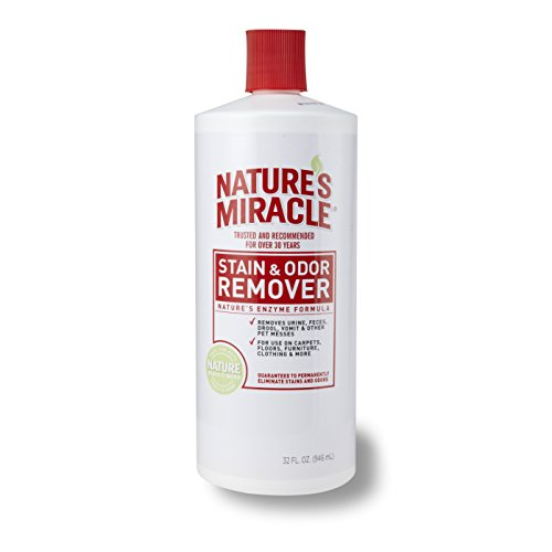Nature's Miracle Stain & Odor Remover, 32-Ounce Pour Bottle (5125) (Odor Remover)
