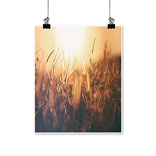 Canvas Prints Artwork The Dog's Tail Grass Under The Sun Art