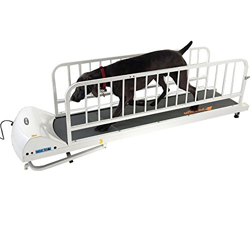 Pacer Treadmill (GoPet Treadmills For Dogs Like The PR725 Provide Excellent Exercise For Large Dogs Up to 175 lbs, Includes Dog Leash)