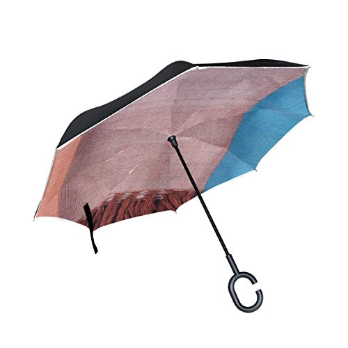 (Jnseff Double Layer Inverted Texture Drapery Fabric Fringes Umbrellas Reverse Folding Umbrella Windproof Uv Protection Big Straight Umbrella for Car Rain Outdoor with C-Shaped Handle)