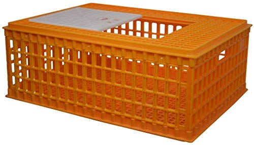 Chicken Crate - RentACoop Poultry Carrier Crate 8-10 Chickens (Set of 1)