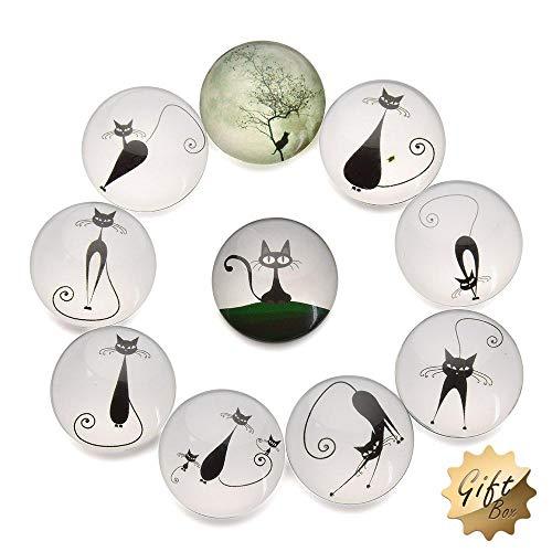 FF Elaine 10 Pcs Fridge Magnets Crystal Glass Housewarming Home Decorations Gift. (Cat)