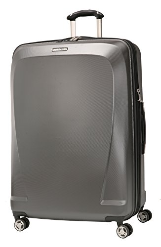 Ricardo Beverly Hills Mar Vista 24-Inch 4 Wheel Expandable Upright, Graphite, One Size