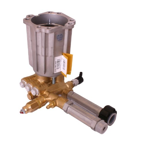 - Briggs & Stratton 206376GS Assembly Pump for Pressure Washers