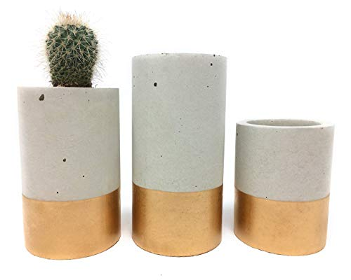 Trendy Edge Fine (Concrete Succulent Planters/Air Plant Holders. Urba planters (set of 3) Gold. Cement Succulent pots. Modern Planter set)