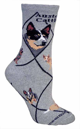 Australian Cattle Dog Animal Socks On Gray 9-11