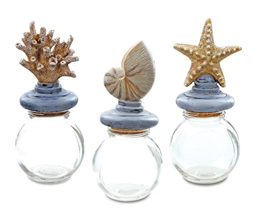 CoTa Global Resin Seashell Apothecary Decorative Glass Potion Jars Design with Cork Stopper, Use as Message Bottle, Candy, Perishable Food and Spices Storage (3pc Set) - Decorative -
