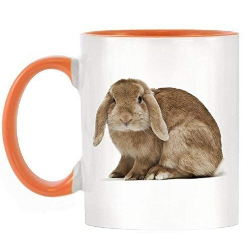 Coffee Mug Lop Eared Rabbit Image Design Two Tone Mug With Orange Handle And Inner 11Oz Ceramics
