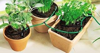 Sistema de Riego Para Plantas de balcón dispensador de agua flores