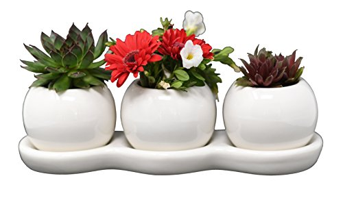 - Ceramic Planters for House Plants-Plant Pots Set for Indoor & Outdoor Use (Round Set) by Arad