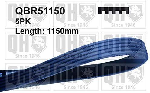 QH QBR51150 Drive Belt