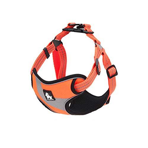 orange MFFLSDR Dog Chest Strap, Vest Pet Leash, Large Dog Leash, No Rope, Multicolor Optional (color   Lake bluee, Size   L)