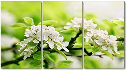 30x40CM X3枚 アートパネル 完成品( 小枝、リンゴの花、緑) モダン 特大 写真 アートフレーム 絵画 壁飾り キャンバス絵画 パネル装飾画(木枠付きの完成品)