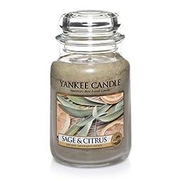 Yankee Candle Company Sage & Citrus Large Jar Candle