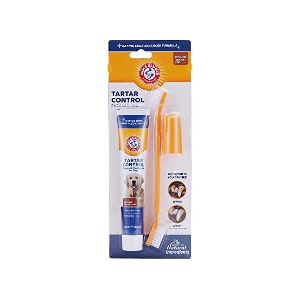 Arm & Hammer Dog Dental Care Tartar Control Kit for Dogs 1