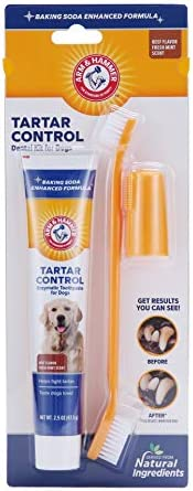 Arm & Hammer Dog Dental Care Tartar Control Kit for Dogs – The Super Cheap