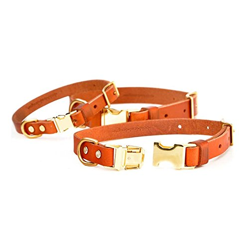Leather Quick-Release Dog Collar from Bold Lead Designs (Medium)