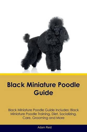 Black Miniature Poodle Guide Black Miniature Poodle Guide Includes: Black Miniature Poodle Training, Diet, Socializing, Care, Grooming, Breeding and More -