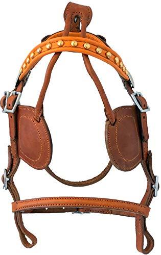 Buy horse training harness