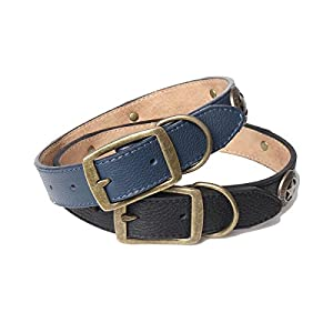 Fourhorse Designer Adjustable Real Leather dog collars with Metal D Ring & personalized Buckle Bronzed flower
