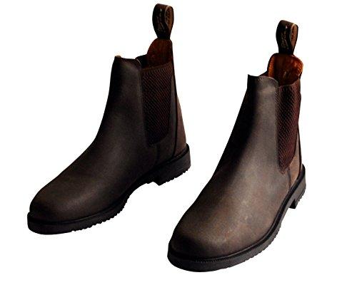 Harry's Horse Ladies American Leather Jodphur Boot QWr9s